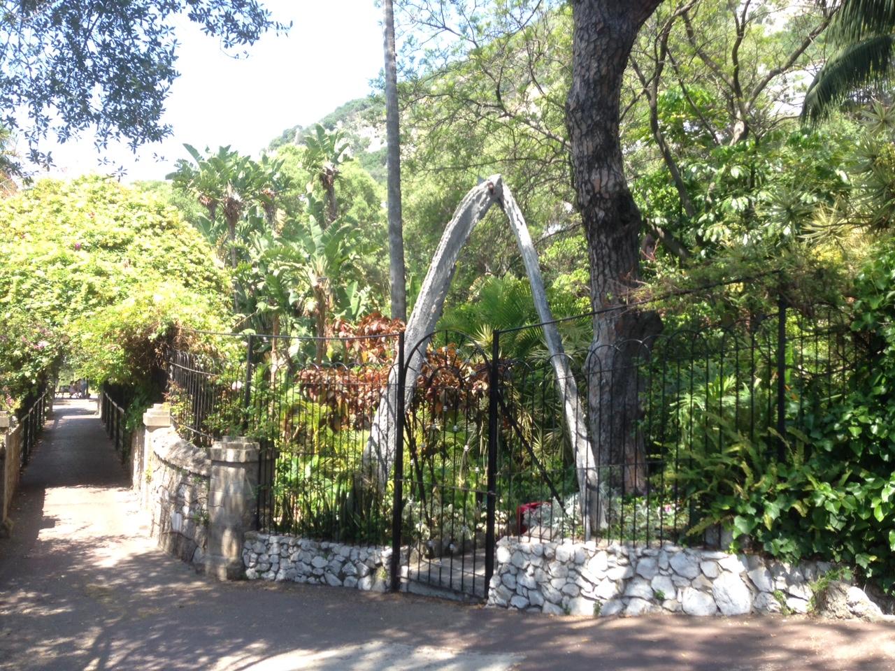 Gibraltar Botanic Gardens Tour