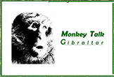 Monkey Talks